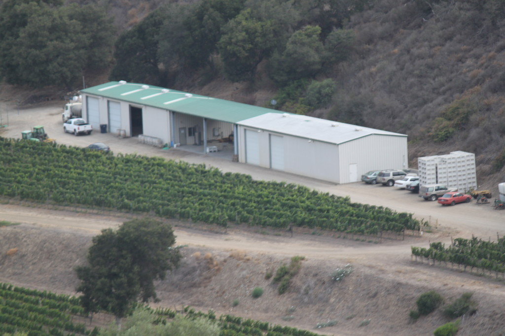 Sea Smoke Vineyard have 170 planted acres on the southern slope of the SR Hills