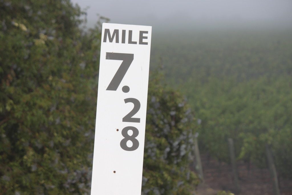 Mileage Marker 7.28, commemorated by Fiddlehead's 728 pinot